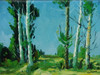 Beautiful small painting on canvas, stretched but without frame, signed by Paul Seward.  White birch trees grow in a field of dark and light green grasses under a bright blue sky.
