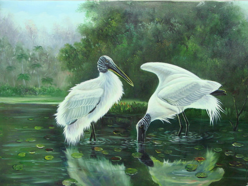 Beautiful medium sized painting, stretched but without frame, by Jackson.  Two large white birds stand in dark water surrounded by green trees.