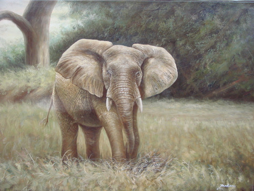 Beautiful medium sized painting, stretched but without frame, by Jackson.  An elephant stands in tall, light brown grass.