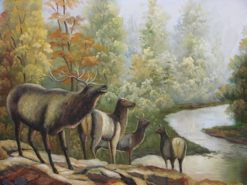 Beautiful medium sized painting, stretched but without frame, unsigned.  A bull elk bugles atop a rocky cliff with three cow elk overlooking a river winding through autumn colored trees.
