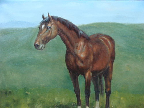 Beautiful medium sized painting, stretched but without frame, by S. Charles.  A brown horse stands proudly in a green field.