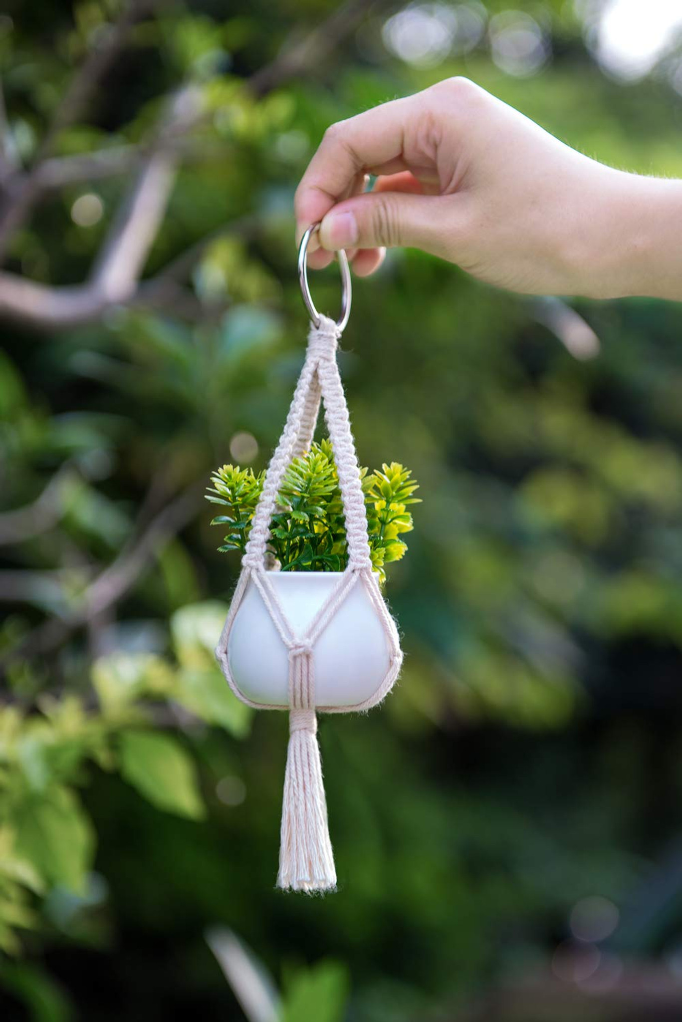 Rearview Mirror Hanging Succulent Planter I Give Cool Gifts