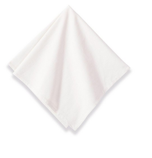 Beautiful set of Cotton Napkins, White, Set of 6