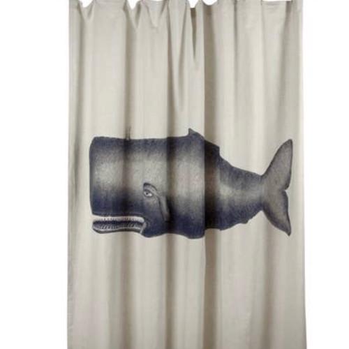 Shower Curtain, Whale