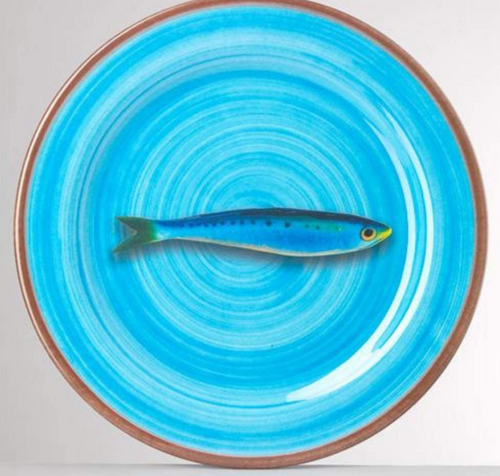Plates with Fish