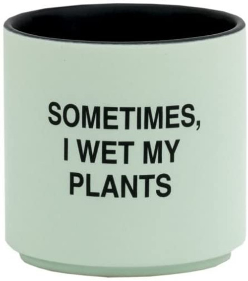 I wet my plants planter