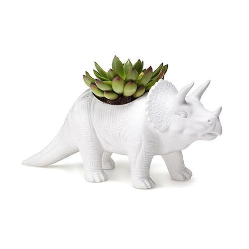 Porcelain Tricerapot