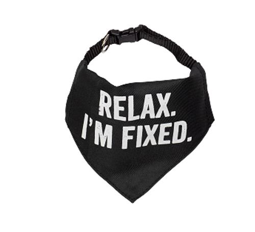 Relaxed I'm fixed bandana L