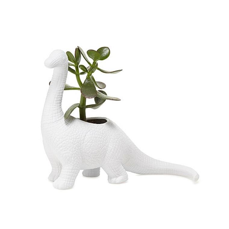 Porcelain Aplantasaurus