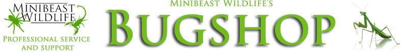 Minibeast Wildlife Bug Shop