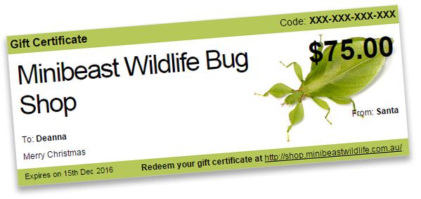 minibeast-wildlife-gift-voucher.jpg