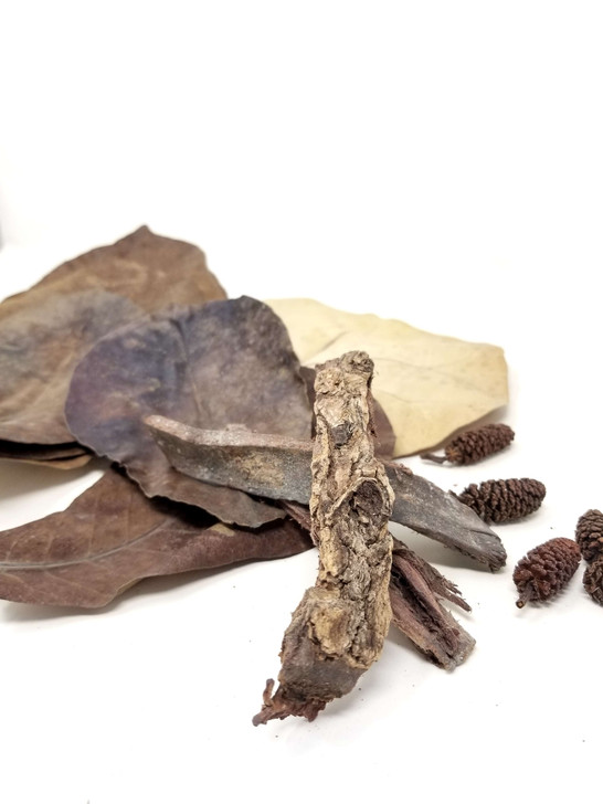 'Blackwoods' Mixed Botanical Bundle