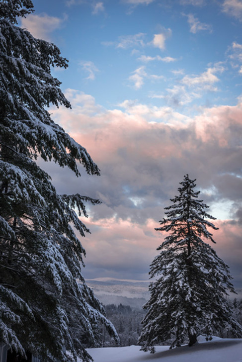 Vermont: Winter Collection