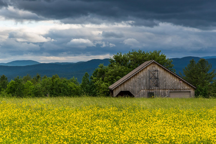 Vermont: Spring Collection