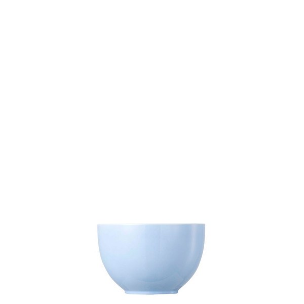 Fruit/Cereal Bowl, 4 3/4 inch, 15 ounce   Thomas Sunny Day Pastel Blue