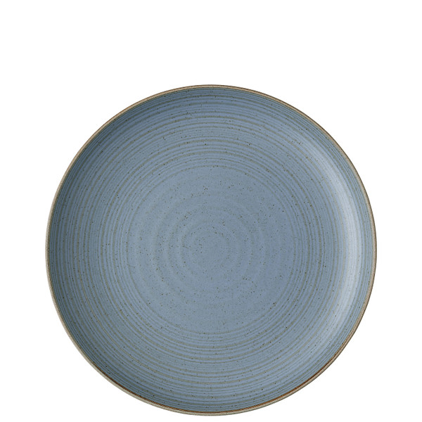Dinner Plate, 10 1/3 inch | Nature Water