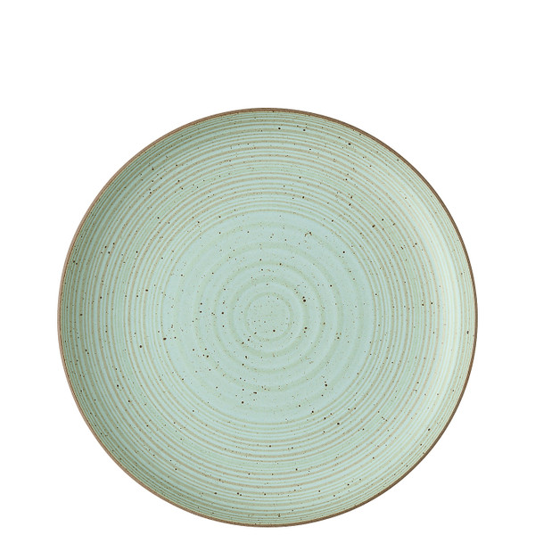 write a review for Dinner Plate, 10 1/3 inch | Nature Leaf