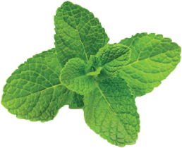 mint-ice.png