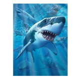 3D Livelife Poster - Great White Delight