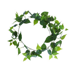 Long Philodendron Garland 190cm