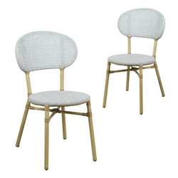 Skyler Style-savvy Outdoor Dining Chair Set of Two Dark