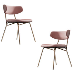 Kylie Modern Blush Dining Chair with Gold Legs Set of 2
