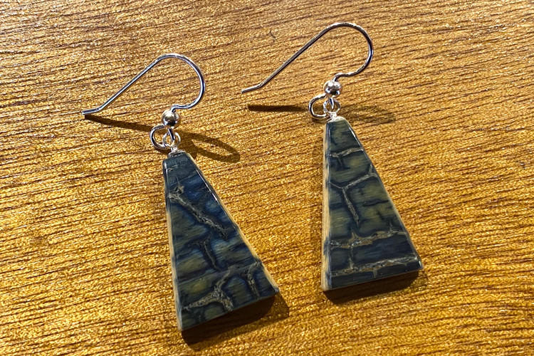 Fossilized Ivory Triangle Earrings