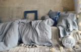 Light Grey stonewashed linen duvet/quilt cover