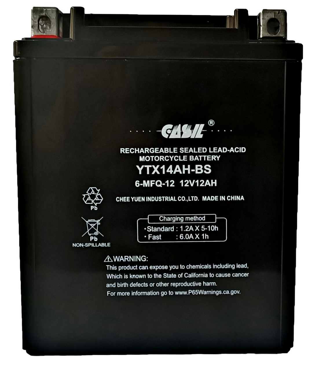 YTX14AH - 12 Volt 12AH 210 CCA - High Performance Maintenance Free SLA AGM Power Sport Battery - Casil Battery