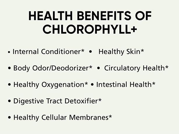 chlorophyll-web-details-2.jpg
