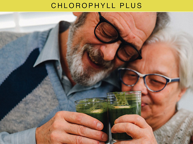 chlorophyll-web-details-3.jpg