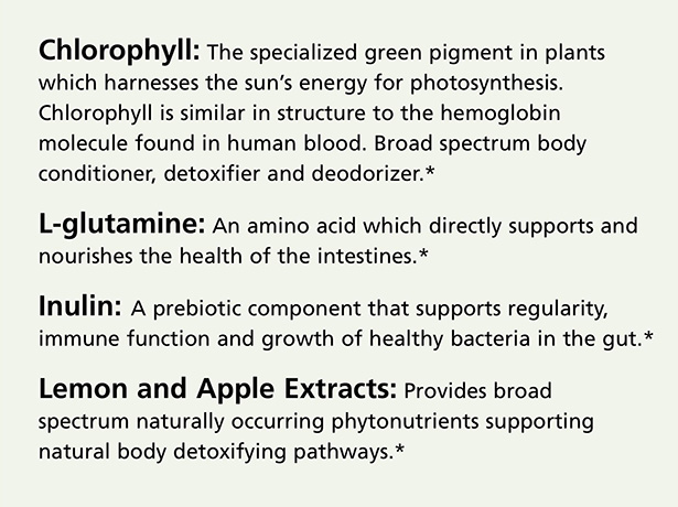 chlorophyll-web-details-4.jpg