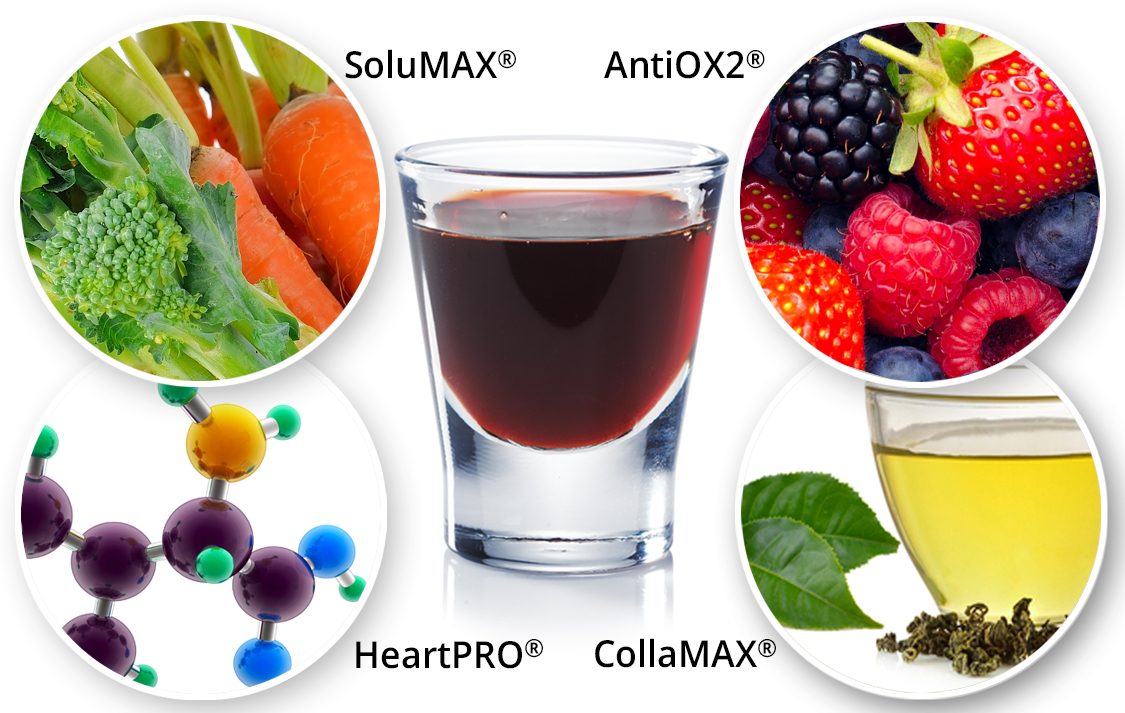 detail-vibe-solumax-minerals-vitamins-phytonutrients.jpg