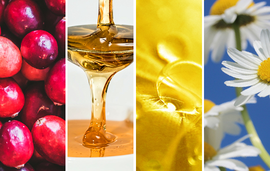 prod-cranberry-honey-chamomile.jpg
