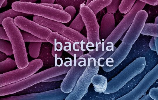 prod-probiotic-bacteria-balance.jpg