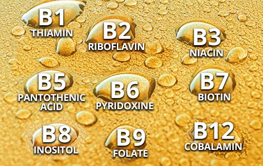 prod-vit-b1-thiamin-b2-riboflavin-b3-niacin-b5-pantothenic-acid-b6-pyridoxine-b7-biotin-b8-inositol-b9-folate-b-b12-cobalamin.jpg