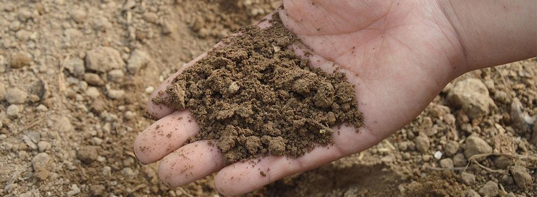 Soil Testing Tips