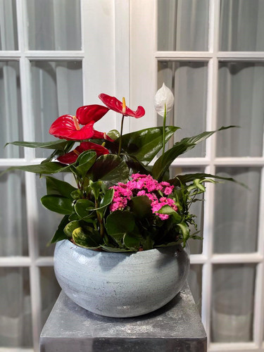 Tropical Planter with Flowering Plant