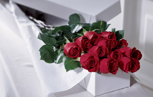 One Dozen Boxed Roses