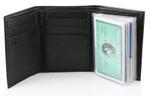 Wallet Window inside trifold wallet