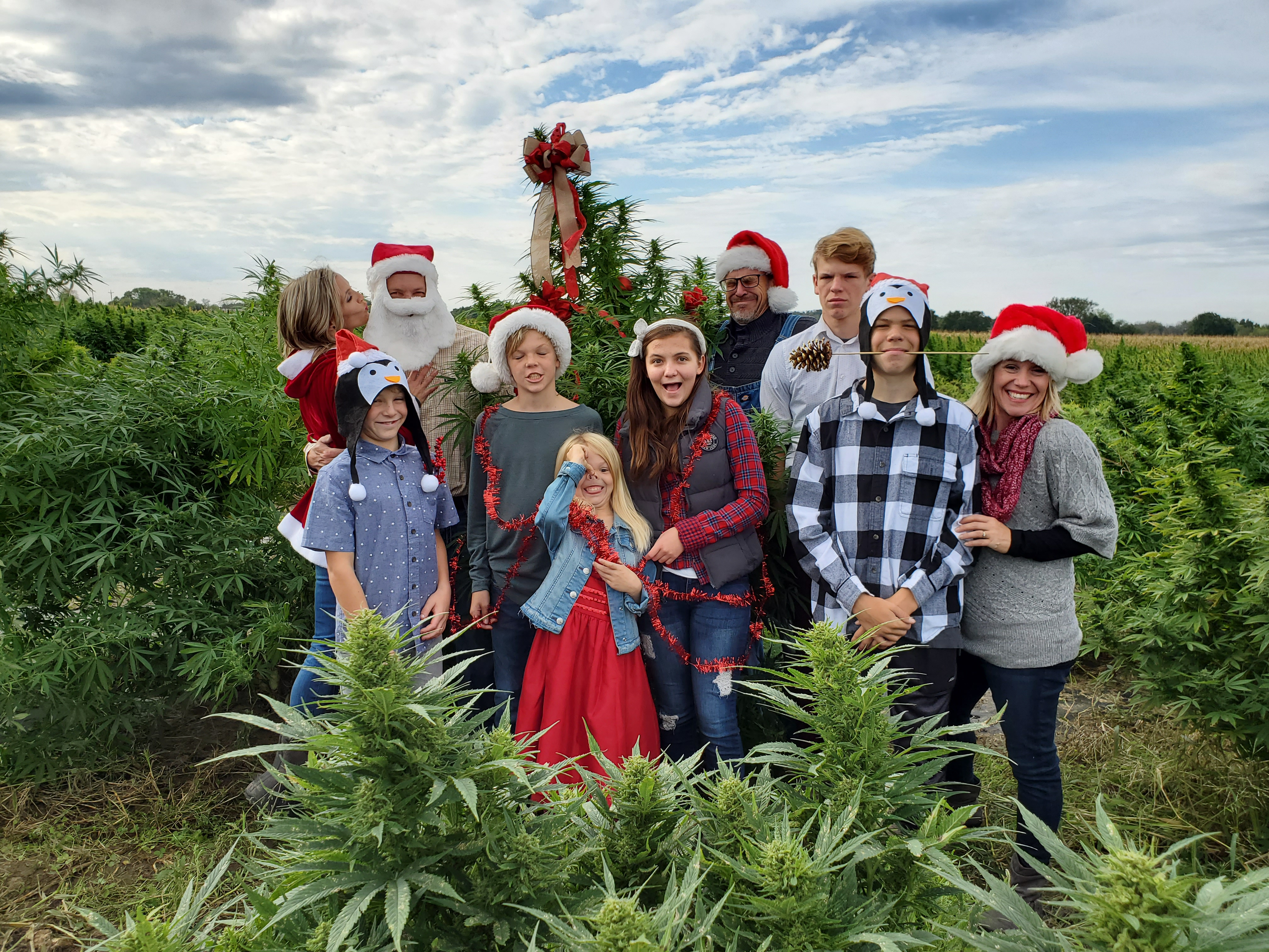 Lakc Country Growers wishes you a Hempy Holiday
