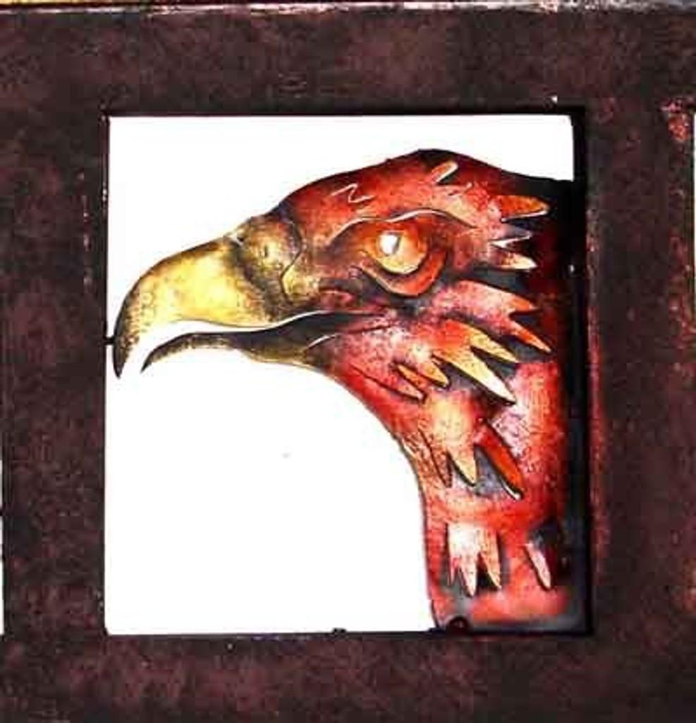 Eagle Head Framed