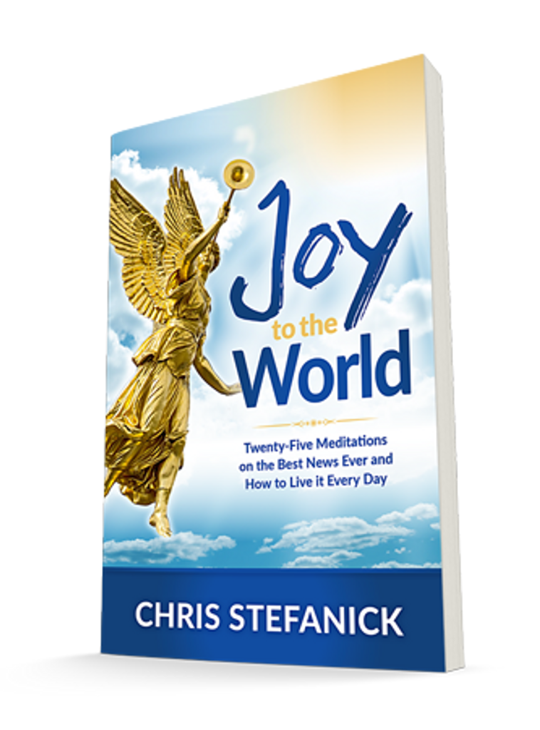**Buy Two or More for Bulk Sale Pricing** Joy to the World: Twenty-Five Meditations on the Best News Ever and How to Live it Everyday - Chris Stefanick - Real Life Catholic (Paperback)