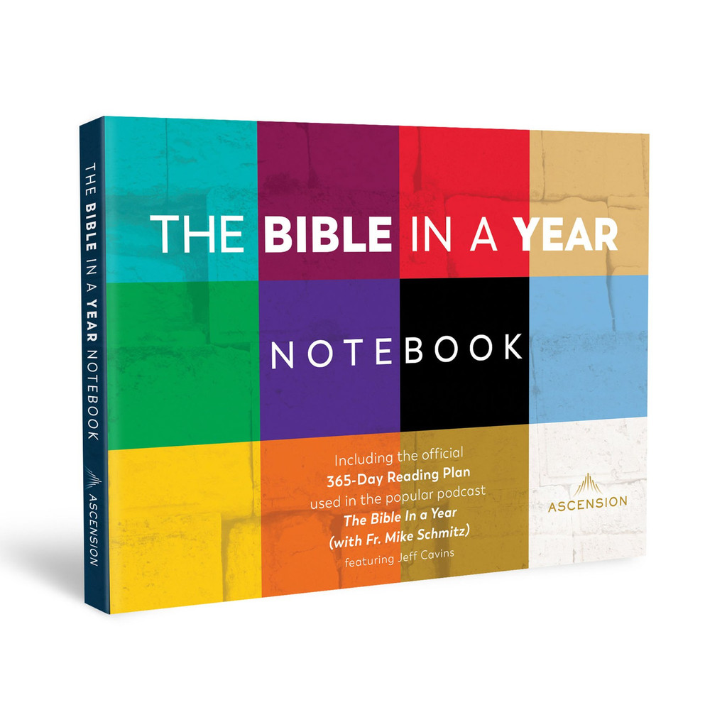 The Bible in a Year Notebook - Fr Mike Schmitz - Ascension (Paperback)