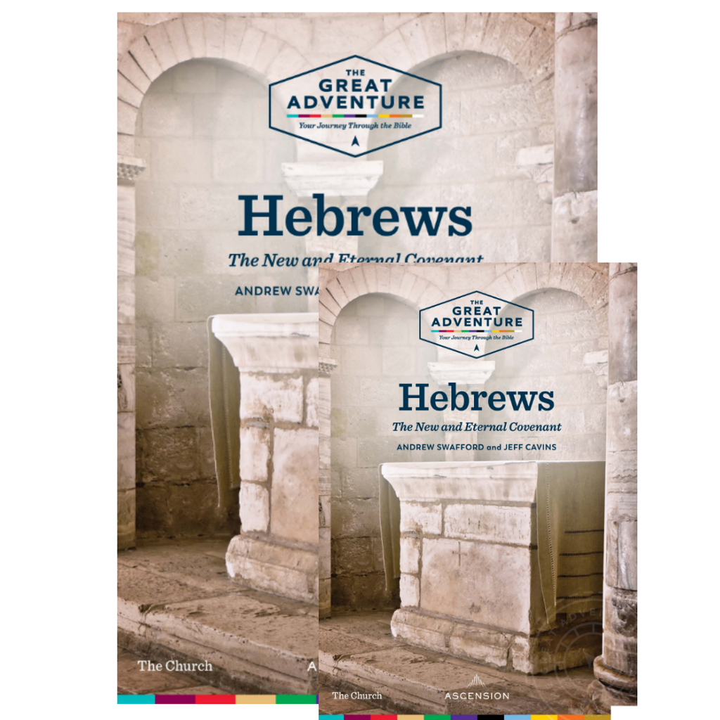 Hebrews: The New and Eternal Covenant -  Andrew Swafford & Jeff Cavins - Ascension Press (Starter Pack)