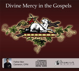 Divine Mercy in the Gospels (2 CD Set) - Fr Ben Cameron, CPM
