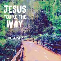 Jesus You're the Way - Joe Apap (Music CD)
