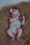 Eloisa vinyl doll kit- full payment + tummy plate