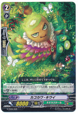 Kakokawa Kiwi  G-TD03/008
