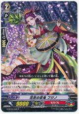 Stealth Rogue of Blossom Hat, Fujino R G-BT03/034